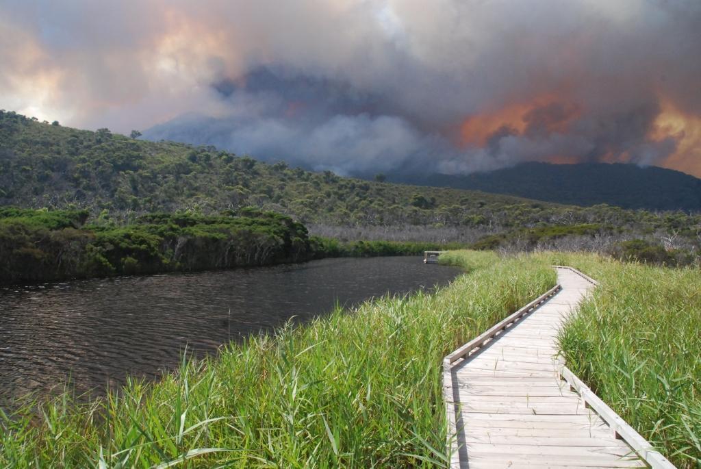 Tidal River fire